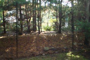 Deer Fence #13