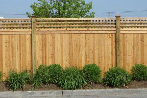 Wood Fences #11
