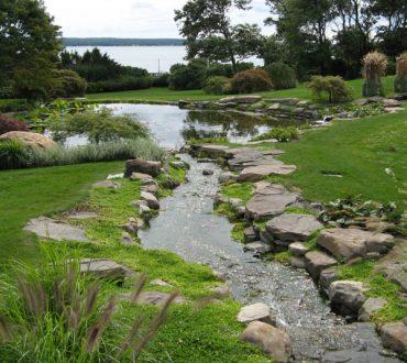 Ponds #2
