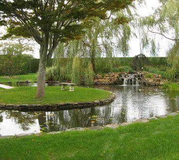 Ponds #3